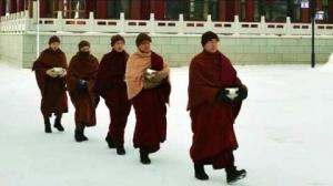 恢復彌陀真法,統貫彌陀法門的方便及真義,即在「三階念佛」