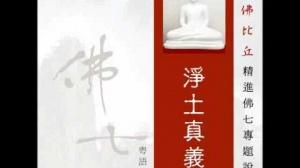 淨土真義 第三集 (華語)