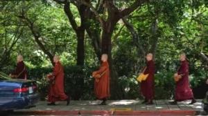 【走過人群、引攝人心】【佛陀弟子僧  中道僧團  隨佛】